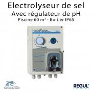 Electrolyseur de sel piscine 60 m3 avec pH intégré en coffret IP65